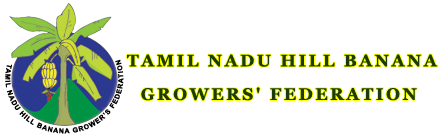 Tamilnadu Hill Banana Growers' Federation
